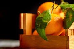Mandarine sinaasappel of mandarijn op houten raad Royalty-vrije Stock Afbeelding