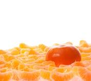 Mandarine in slices of peeled orange Stock Images
