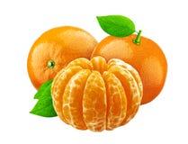 Mandarine som isoleras på vit bakgrund royaltyfri fotografi