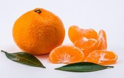 Mandarine sur le fond blanc Photographie stock libre de droits