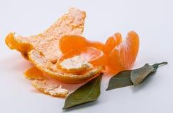 Mandarine sur le fond blanc Photo stock