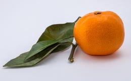 Mandarine sur le fond blanc Photo libre de droits