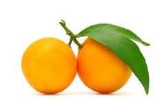 Mandarine. On a white background Royalty Free Stock Photo