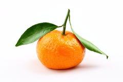 Mandarine on white background Stock Images