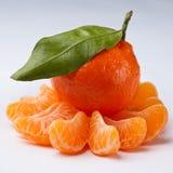 Mandarine - Zitrusfrucht stockfoto