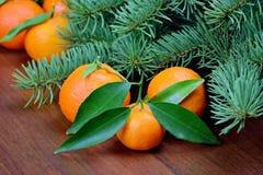 mandarinen Stockfoto