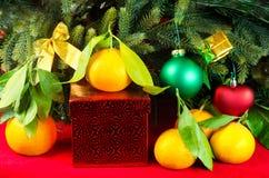 Mandarinen nahe bei Weihnachtsbaum Stockbild