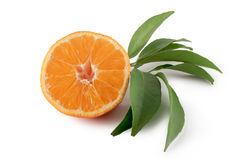 Mandarinenscheiben auf Weiß Stockfoto