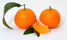 Mandarinenzitrusfrucht auf weißem Hintergrund Lizenzfreies Stockbild