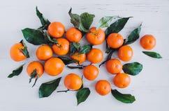 Mandarinenzitrusfruchthintergrund Lizenzfreie Stockfotografie