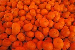 Mandariner Arkivbilder