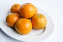 Mandariner royaltyfri foto