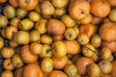 Mandariner av olika format på räknaren fotografering för bildbyråer