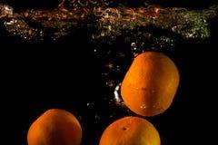 Mandariner i vattnet Royaltyfria Bilder