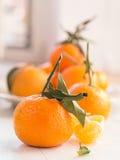 Mandariner med ark Royaltyfri Fotografi