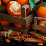Mandariner och kryddor Royaltyfri Fotografi