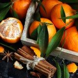Mandariner och kryddor Fotografering för Bildbyråer