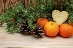 Mandariner på ett träår för jul för vinter för bakgrundskanel- och stjärnaanis nytt arkivfoto