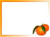 Mandarinerand Lizenzfreie Stockbilder