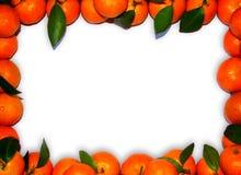 Mandarinerand Lizenzfreie Stockfotografie