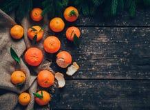 Mandarines à bord Image libre de droits