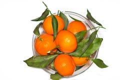 Mandarines är i en vaseon Vit bakgrund Arkivbilder
