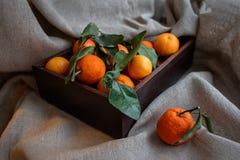 mandarines Imagen de archivo