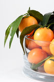 Mandarines Royalty Free Stock Photos