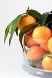Mandarines Royalty Free Stock Photos