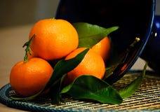Mandarines. Images libres de droits