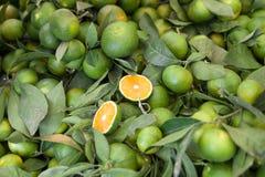 Mandarines Imagen de archivo libre de regalías