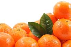 Mandarines Image stock