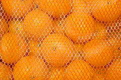 Mandarines Royalty Free Stock Photo