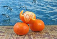 Mandarines Stock Fotografie