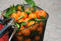 Mandarines Fotos de archivo libres de regalías