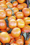 mandarines Foto de archivo