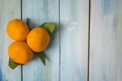 Mandarines adentro delante del tableros azules brillantes fotos de archivo