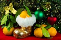 Mandarines al lado del árbol de navidad Fotografía de archivo libre de regalías