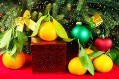 Mandarines al lado del árbol de navidad Foto de archivo libre de regalías
