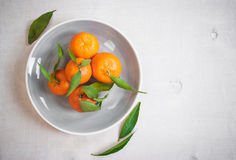 Mandarines avec les feuilles vertes sur le fond en bois blanc Photographie stock libre de droits