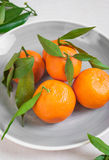 Mandarines avec les feuilles vertes sur le fond en bois blanc U étroit Images stock
