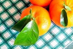 Mandarines avec les feuilles vertes sur une nappe à carreaux Photographie stock libre de droits