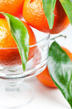 Mandarines avec les lames vertes dans la fin de vase vers le haut Photo stock