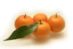 Mandarines con las hojas Fotografía de archivo