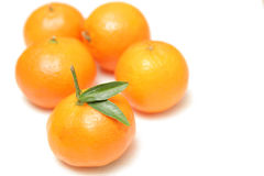 mandarines d'isolement par fond blanches Photos stock