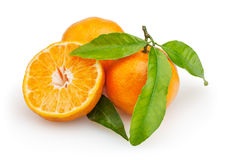 mandarines d'isolement par fond blanches Images libres de droits