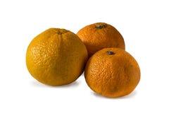 mandarines d'isolement par fond blanches Photographie stock