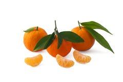 Mandarines d'isolement sur le fond blanc avec le chemin de coupure Images stock
