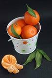 Mandarines dans la position blanche image stock