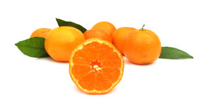 Mandarines de clémentines parfaites Images libres de droits